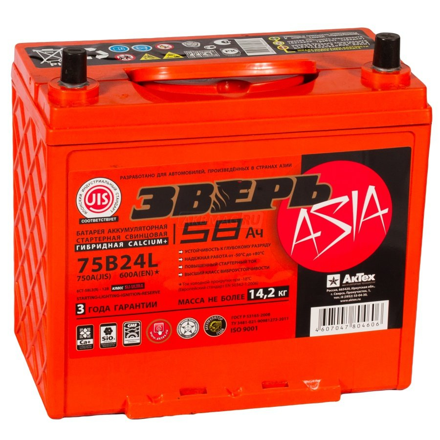 Аккумулятор ЗВЕРЬ ASIA 58А/ч EN600