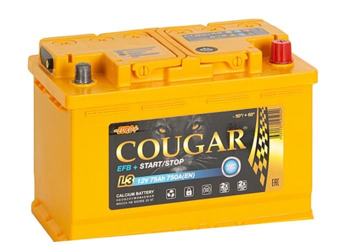 COUGAR EFB 75 А/ч R+ 750А