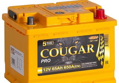 COUGAR PRO 65 А/ч R+ EN650A