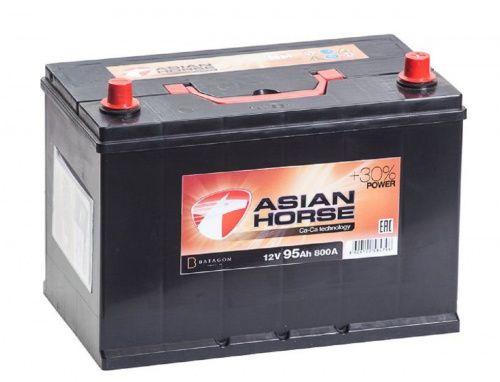 Asian Horse D31L 95Ah 800A