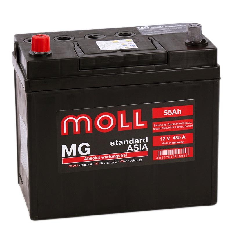 MOLL MG B24R 55Ah 485A