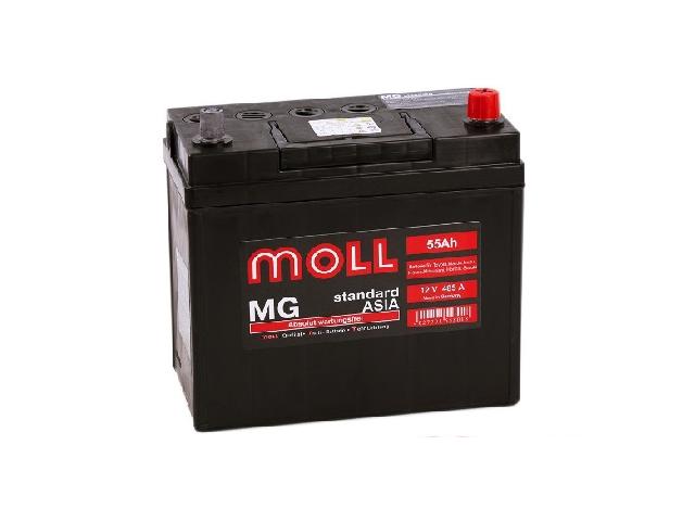 MOLL MG B24L 55Ah 485A